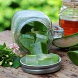 Aloe vera, honung för hudomsorg Royaltyfri Fotografi