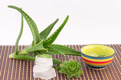 Aloe Vera and ice. Aloe vera ice and aloe juice on a white background royalty free stock photo