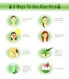 Aloe Vera infographic.Aloe Uses. Royalty Free Stock Photos