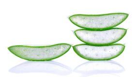 Aloe vera isolata su priorità bassa bianca Immagine Stock