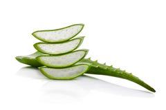 Aloe vera isolata su priorità bassa bianca Fotografie Stock
