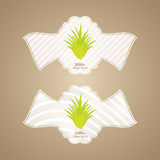 Aloe vera labels Royalty Free Stock Image
