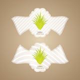 Aloe vera labels Royalty Free Stock Image