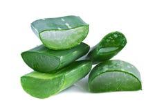 Aloe Vera Leaf Immagini Stock