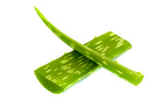 Aloe vera leaf . Royalty Free Stock Image