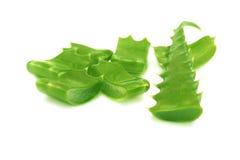 Aloe vera leaf. Royalty Free Stock Images