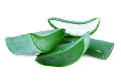 Aloe Vera Leaf isolata su bianco Immagini Stock