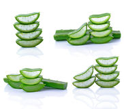 Aloe vera leaf Stock Image