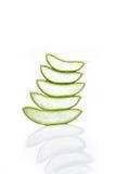 Aloe vera leaf and slice isolated on white background Royalty Free Stock Photo