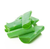 Aloe vera leaf and slices Stock Image