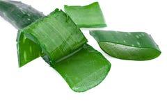 Aloe vera leaf Stock Photo