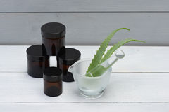 Aloe Vera Leaves Immagini Stock
