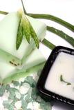 Aloe vera leaves, handmade soap, moisturizer and b Stock Photo