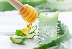 Aloe Vera med honungcloseupen på vit träbakgrund Skivade Aloevera naturliga organiska förnyandeskönhetsmedel, alternativ medicin Royaltyfri Bild