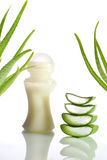 Aloe vera Stock Photos
