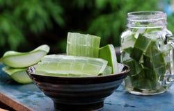 Aloe vera, medicina dell'erba Fotografie Stock Libere da Diritti