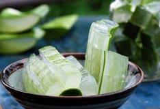 Aloe vera, medicina dell'erba Fotografia Stock