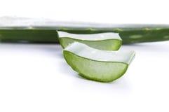 Aloe vera - medicina di erbe Immagine Stock