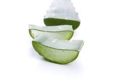 Aloe vera - medicina di erbe Fotografia Stock Libera da Diritti