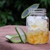 Aloe vera, miele per cura di pelle Fotografia Stock Libera da Diritti