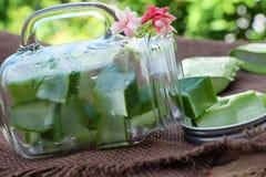 Aloe vera, miele per cura di pelle Fotografie Stock