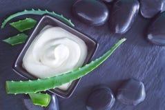Aloe Vera mit Lotions-Kasten Lizenzfreie Stockfotos