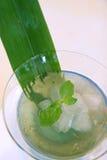Aloe-Vera-Nachtisch Lizenzfreies Stockfoto