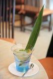 Aloe-Vera-Nachtisch lizenzfreie stockfotografie