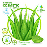 Aloe Vera Natural Cosmetics Poster. Including 3d leaves of plant floral emblem and organic icons vector illustration Stock Photography