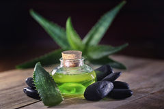 Aloe vera. Oil on black background royalty free stock images