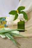 Aloe vera oil Royalty Free Stock Image