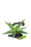 Aloe vera. Oil,white background Stock Photo