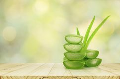 Free Aloe Vera On Product Display Wood Counter. Royalty Free Stock Image - 110683516