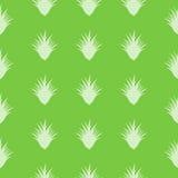 Aloe Vera pattern Stock Photography