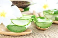Aloe Vera per cura di pelle Immagini Stock