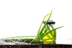 Aloe Vera In per exponeringsglas, aloe Vera Splash Royaltyfri Foto