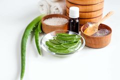 Aloe Vera per i trattamenti, il massaggio e la doccia della stazione termale Fotografia Stock