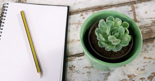 Aloe vera plant, diary with pencil and binder clips. On wooden surface stock footage