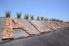 Aloe Vera Plant. Medicinal Aloe Vera Plant in the Canary Islands royalty free stock photos