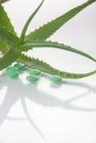 Aloe vera plant with pills Royalty Free Stock Image