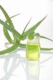 Aloe vera plant with tubes Royalty Free Stock Photo