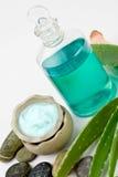 Aloe vera products Royalty Free Stock Photos