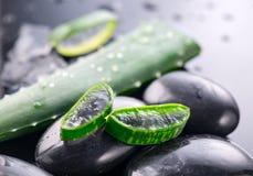 Aloe-Vera-Scheiben und Badekurortsteinnahaufnahme auf schwarzem Hintergrund Aloevera-Betriebsblattgel, natürliche organische Erne lizenzfreies stockbild