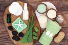 Free Aloe Vera Skincare Royalty Free Stock Photography - 160761067