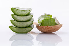 Aloe Vera slice natural spas ingredients for skin care. Aloe Vera slice natural spas ingredients for skin care isolated on a white background Stock Photography