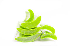 Aloe vera sliced Royalty Free Stock Photos