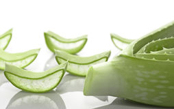 Aloe vera slices Stock Images