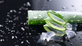Aloe Vera slices closeup. Aloevera plant leaf gel, natural organic renewal cosmetics, alternative medicine stock photos