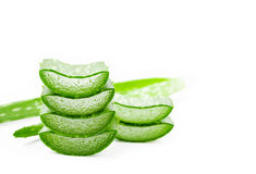 Aloe Vera sloced. Aloe Vera sloced and whole isolated on white background Royalty Free Stock Photography