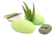 Aloe vera soap Stock Photography